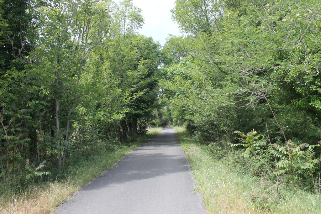 Forêt de Coubre-La Tremblade