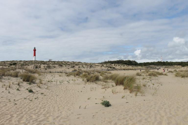 Pointe de la Coubre